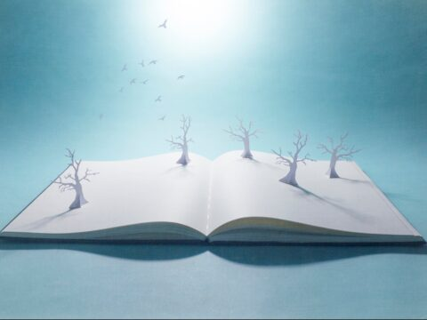 Why Storytelling Is a Skill that Every Entrepreneur Should Practice