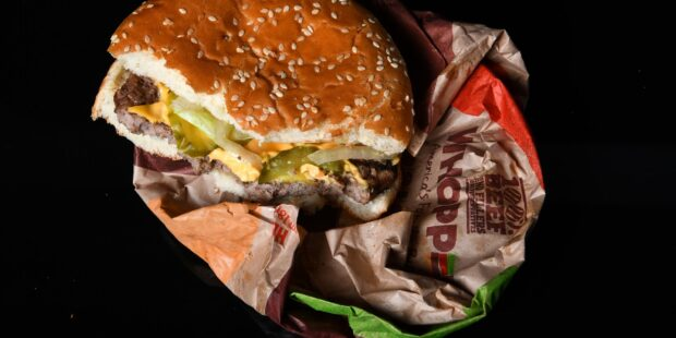 Goodbye Picture Perfect Ads, Hello there Moldy Burgers: What We Can Learn From Burger King's Digital Marketing Technique