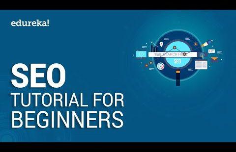 SEO Tutorial For Beginners   Learn SEO Step by Step   Digital Marketing Training   Edureka